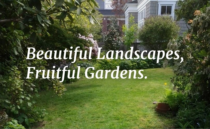 Bringing Gardens And Dream Projects To Life Is Our Passion.